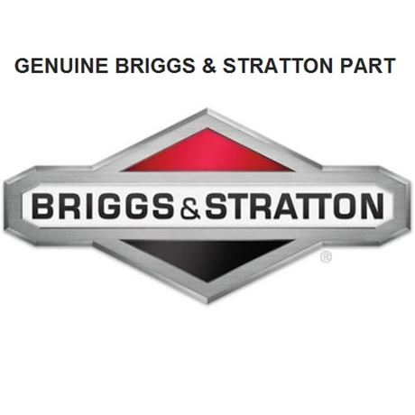 Briggs and Stratton Motor-Starter